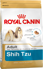 RC Shih Tzu Adult
