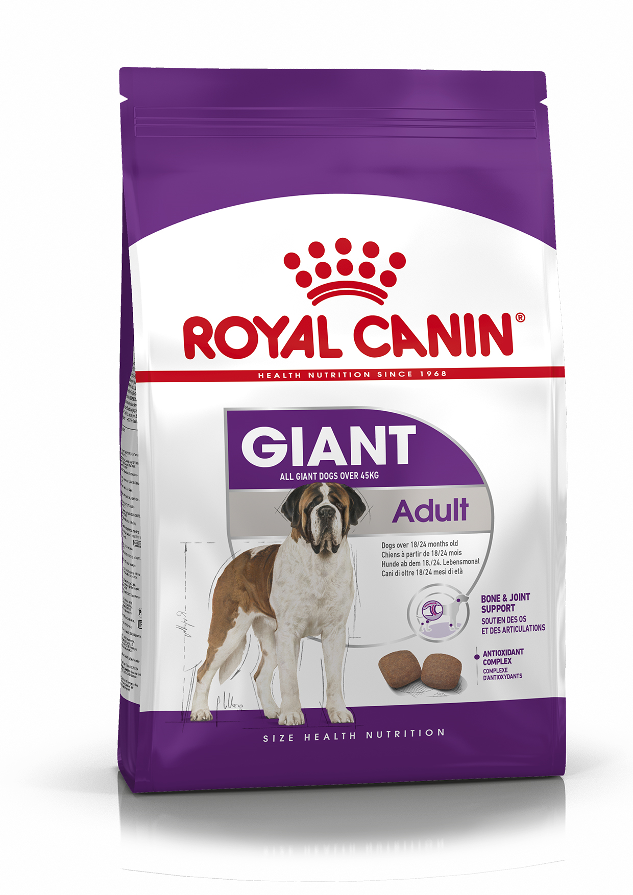 RC Giant Adult