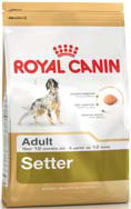 RC Setter Adult 12 кг