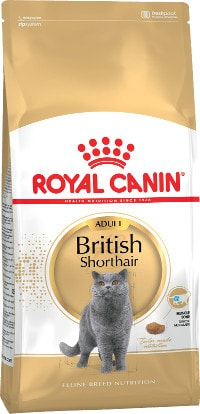 RC British Shorthair 400 гр