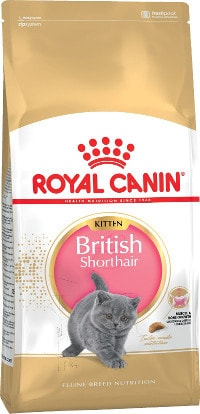 RC Kitten British Shorthair 400 гр
