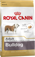 RC Bulldog Adult