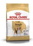 RC Beagle Adult 3 кг