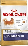 RC Chihuahua Adult