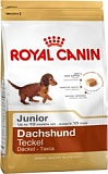 RC Dachshund Junior 1,5 кг