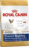 RC French Bulldog Junior