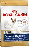 RC French Bulldog Adult